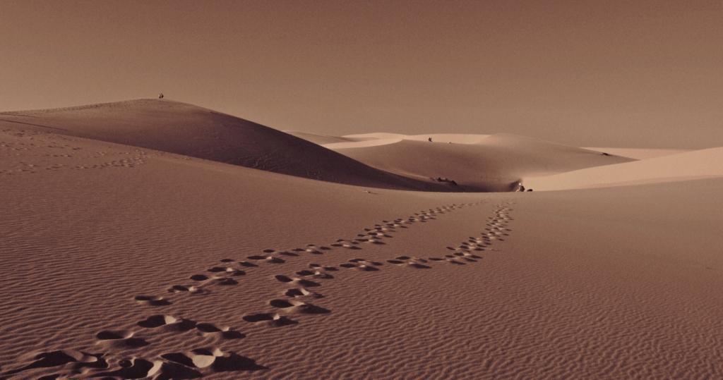 16_white_dunes